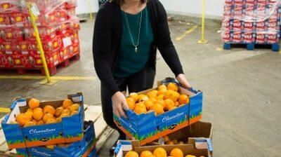مرأة توزع الفاكهة لمنطمة التي توزع الغذاء